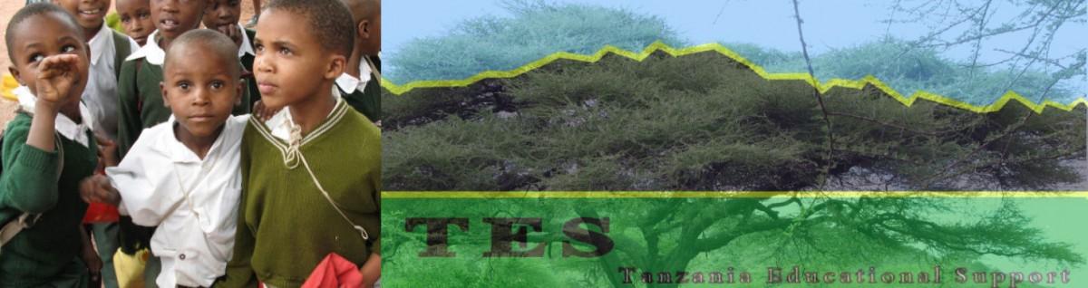 TES Skolen i Afrika